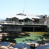 The Monterey Bay Aquarium in Monterey, California