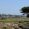 Golf course @ Monterey - one of many