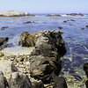 Rocks @ Monterey Bay