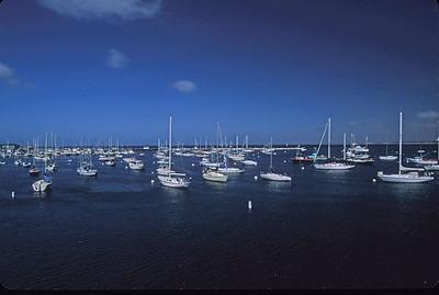 Monterey marina