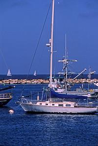 The single boat