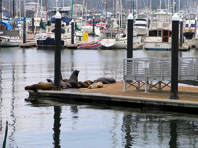 Monterey October 2006