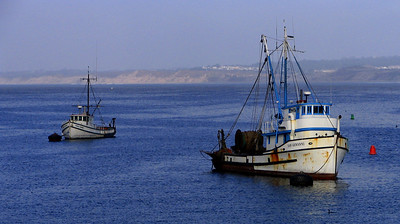 More of the fishing fleet