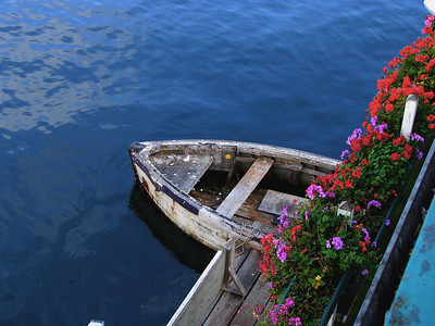 Again liked the color contrast and the rustic feel of the neglected boat.