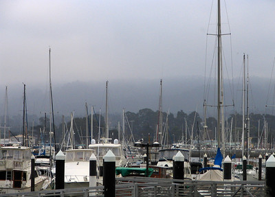 Fog over the harbor