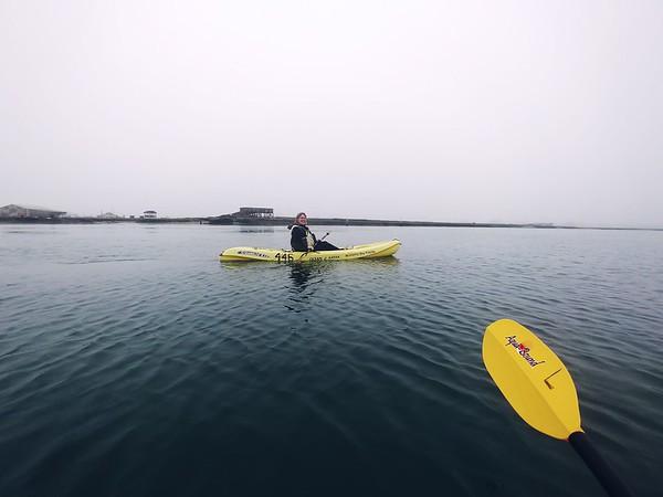 Elkhorn Slough Kayaking