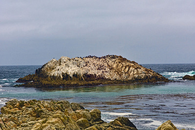 17 mile drive Pebble Beach to Carmel - Bird Island