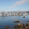 August 7 - Just a beautiful day...<br /> <br /> Monterey Bay, CA