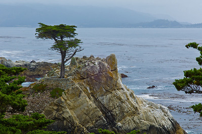17 mile drive Pebble Beach to Carmel - Beautiful view