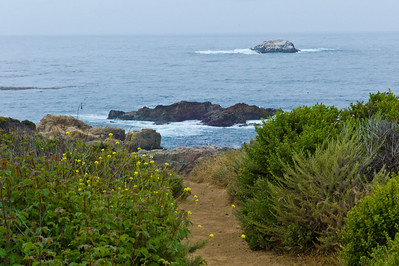 Big Sur Coast - A lonely trail to the cliffs.