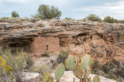 2016-10-08  Montezuma Well, Camp Verde, Arizona