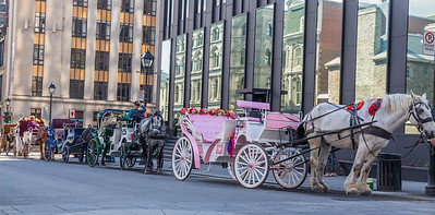 Horse carriage is a typical transportation mode to see Old Montreal.