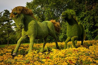 Montreal Botanical Gardens.