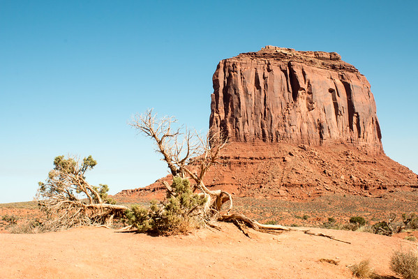 Monument Valley / Navajo National Monument / Arizona