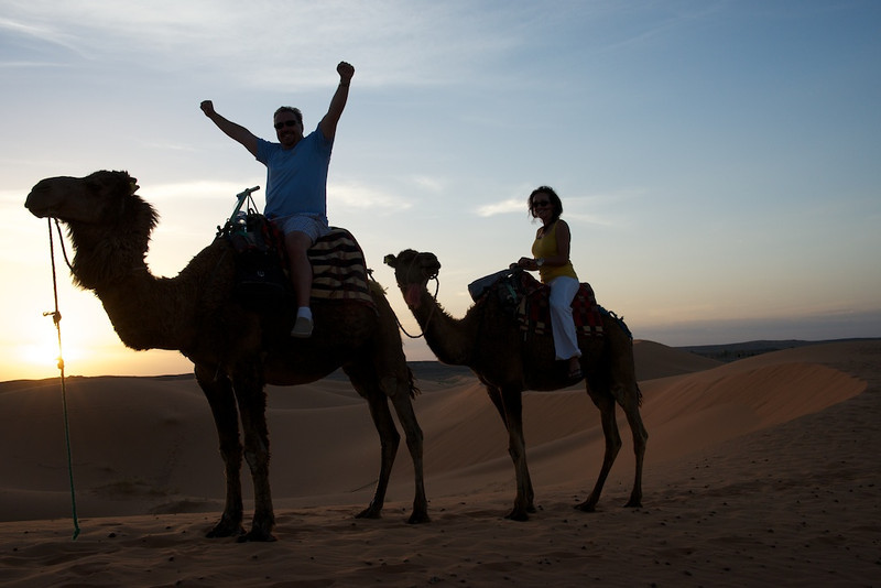Sunset camel ride in the Sahara desert.
