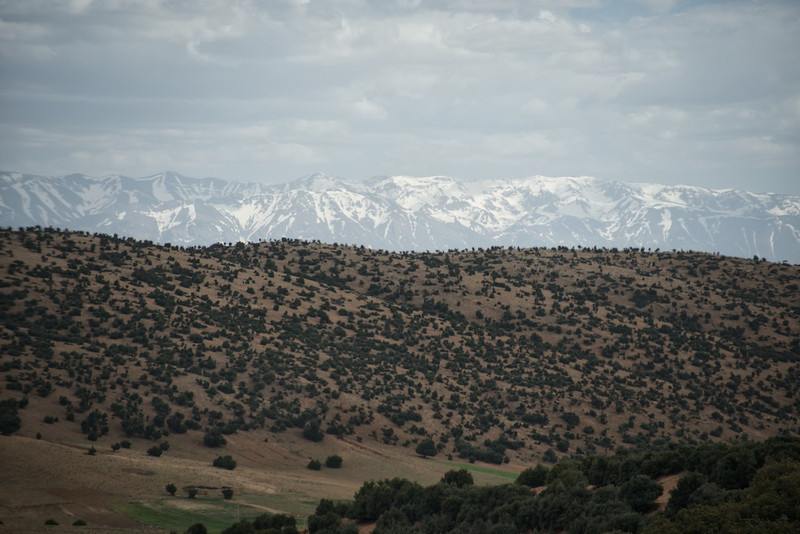 High Atlas Mountains from the wet side.