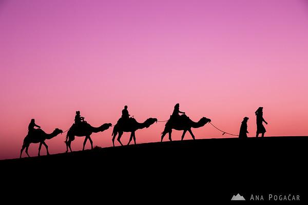 A caravan before sunrise - Erg Chebbi sand dunes of the Sahara