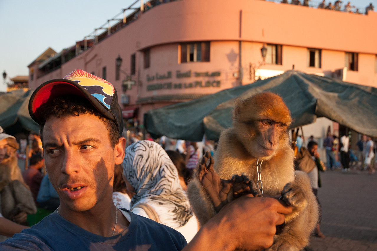 I paid this guy to get a photo and got a good one. These apes I think are not treated well. You can see the sad lack of love between the two here.<br /> <br /> Top Photo