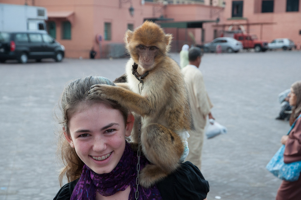 We were identified as newbies as soon as we entered the big square and this monkey was put upon our shoulders; the price negotiated after the fact.