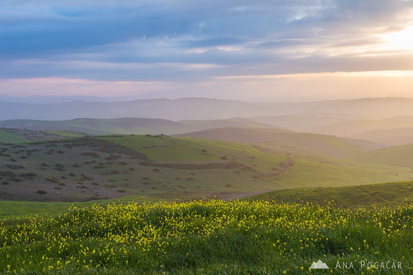 Fantastic sunrise over the rolling hills of northern Morocco