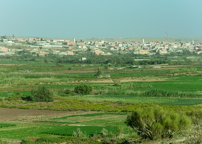 THE MASSA RIVER FLOODPLAIN, OUAD MASSA, NEAR SIDI OUASSAY, SOUTH OF AGADIR, MOROCCO.