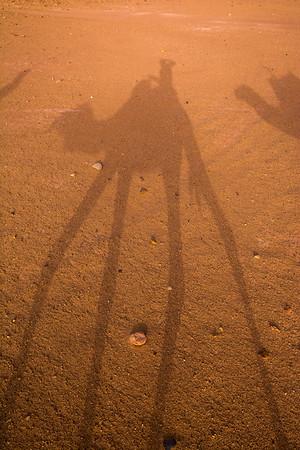 Camel shadow in the Saharah Desert, Morocco
