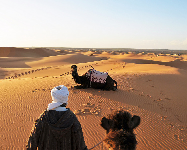 Sunset camel ride on the Erg Chebbi dunes, the Sahara, Morocco