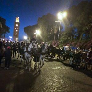 Marrakesh-3152