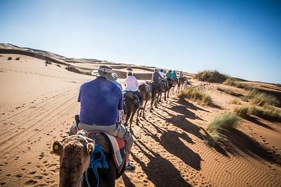 Sahara Odyssey
