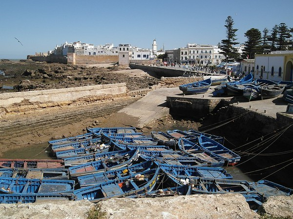 Marrakech day tours to Essaouira