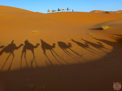 Peak Hour in the Sahara