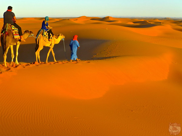 camel ride in the Sahara Morocco 2