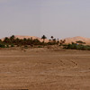 A small palmery with Merzuga & the Erg Chebbi in the background