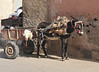 Typical delivery system in Marrakech