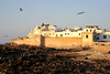Essaouira, on the Atlantic coast. Famous in the 1960' & 70's as a hippy hangout, as well as fishing. Good example of medieval walled fortress town