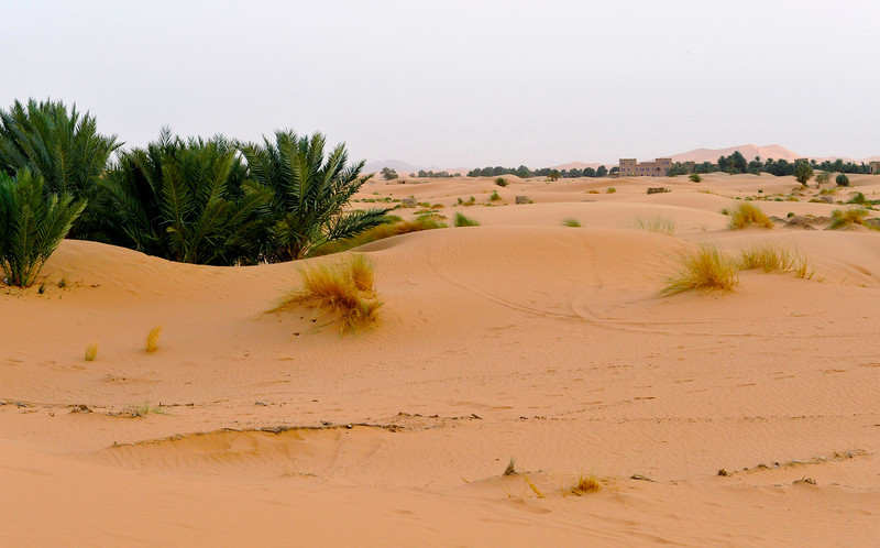 We were told the dune in the distance is over 350 metres high - about 5km away.