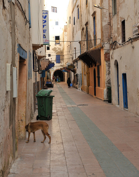 Essaouira side street during the Siesta break. All the shops are closed during the hottest part of the day.
