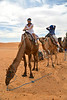 That is One Long Neck, Sahara Desert, Morocco