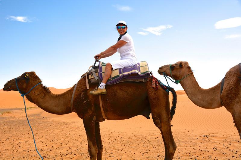 Rosalind on Her Dromedary, Sahara Desert, Morocco