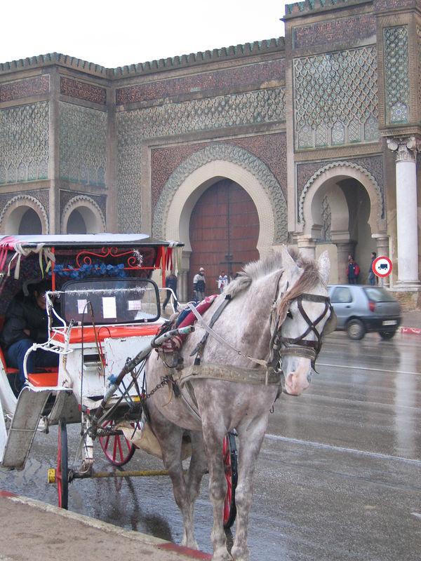 Outside the gates of Meknes medina