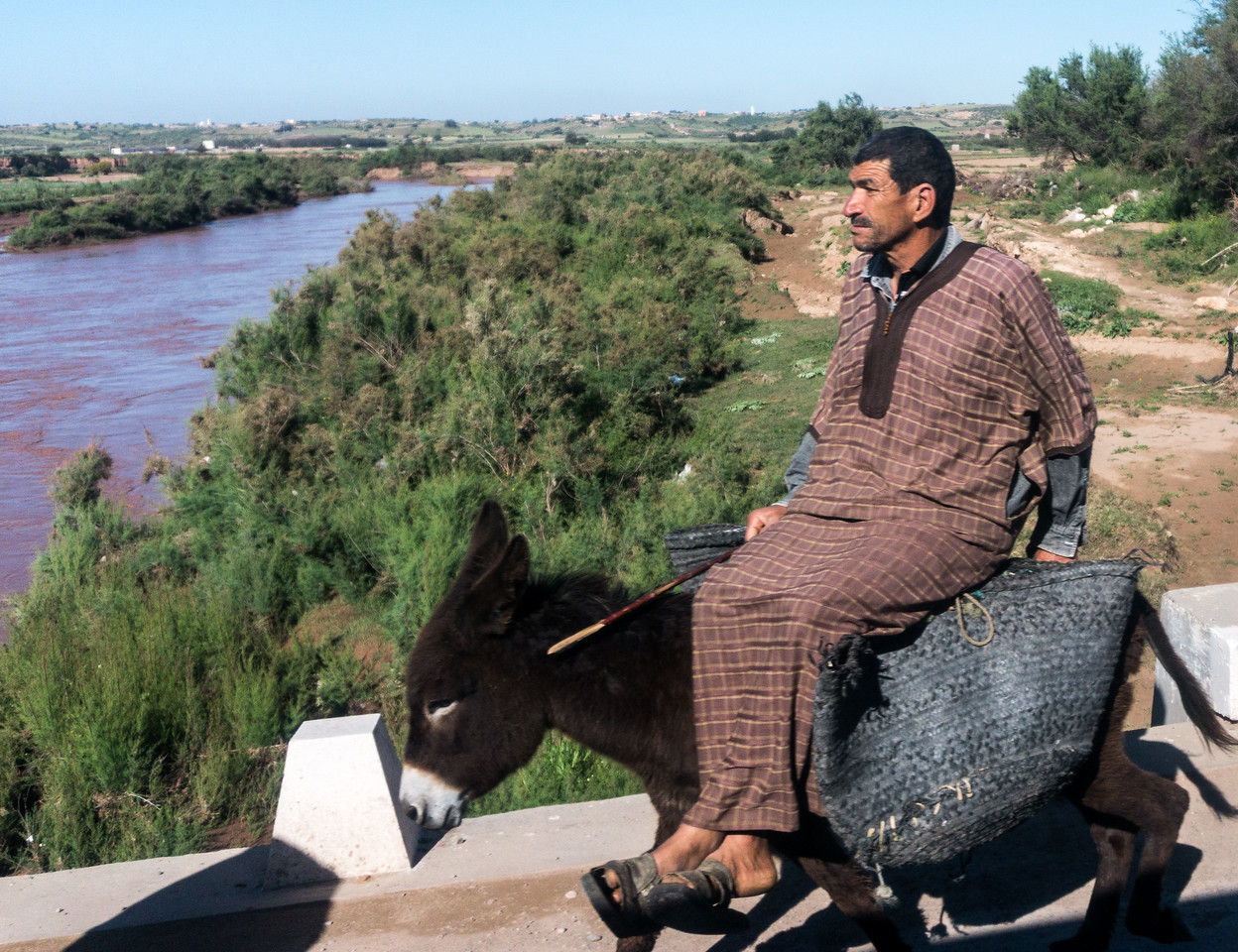 Another example of the variety of transport that we saw on the road from Essaouira to Casablanca
