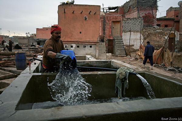 Tannery, Marrakech