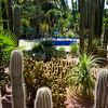 Majorelle Garden, Marrakesh