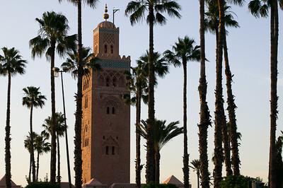 CAV18635 - Minareto tra le palme al Jardin de la Koutoubia