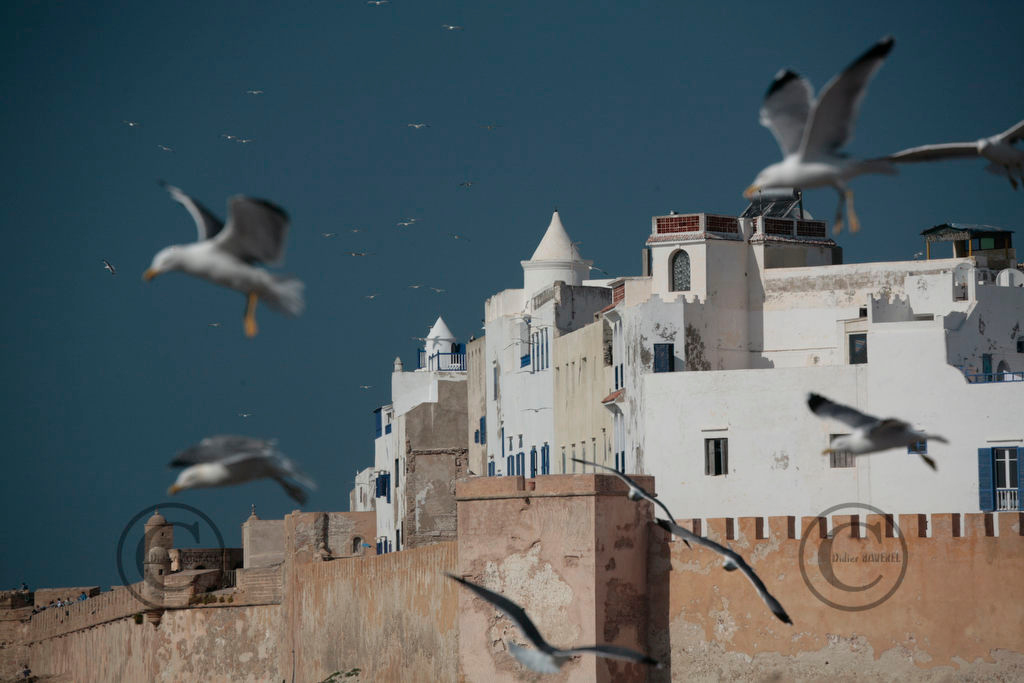 MARRAKECH  LE 15/03/2006