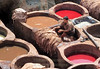 Workers typically get into the dye vats with the hides, dyeing themselves in the process.