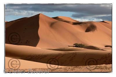 Merzouga le 15/12/2006  Concert de Jean Michel Jarre au pied des dunes de Merzouga aux portes du Désert Marocain,sous l'Egide de l'Unesco  ©Didier Baverel/Starface