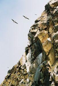 8/19/04 Morro Rock