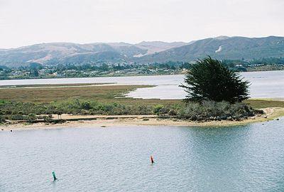 8/19/04 Morro Bay State Park, sand spit at Marina