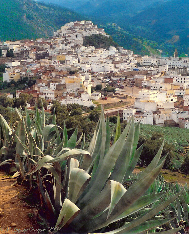 The sacred city of Moulay Idriss. We were told that it was the first year it was opened to foreigness.
